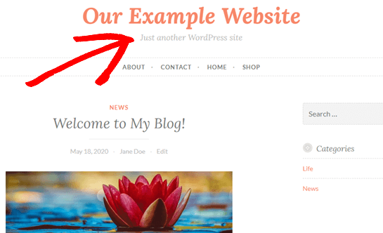 change the just another wordpress site text01 - نحوه تغییر متن Just Another WordPress Site