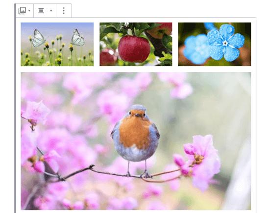 put images side by side in wordpress05 - چگونه تصاویر را در وردپرس کنار هم قرار دهیم