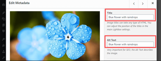put images side by side in wordpress14 - چگونه تصاویر را در وردپرس کنار هم قرار دهیم
