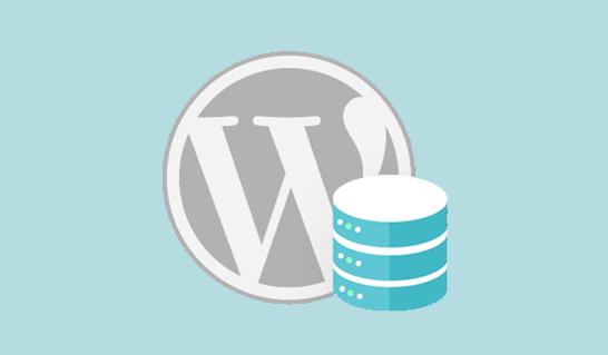 wordpress performance and speed 12 - راهکار های عالی برای افزایش سرعت سایت