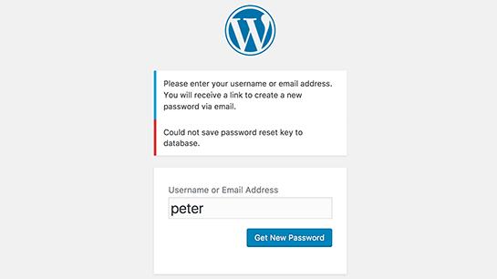 fix password reset key error in wordpress 01 - آموزش رفع ارور could not save password reset key to database