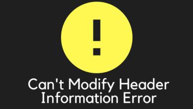 brunch 2 390x220 - نحوه رفع ارور Cannot Modify Header Information در وردپرس